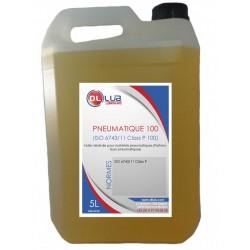 huile PNEUMATIQUE 100 (ISO 6743/11 Class P 100)